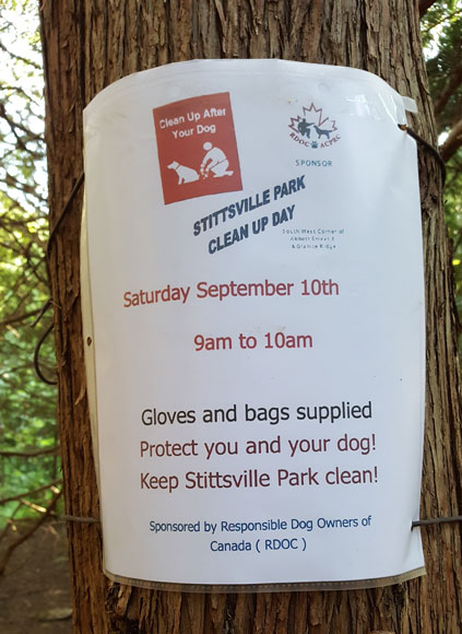 Stittsville dog park clean-up