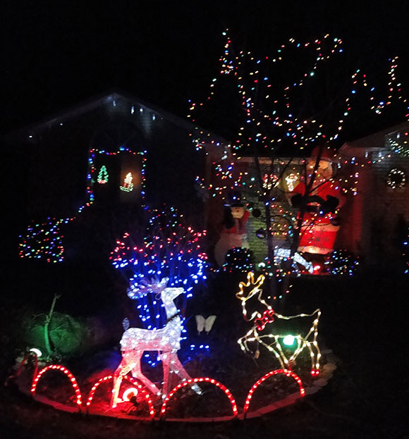 Christmas lights on Sunnyside near Fernbank