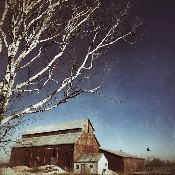 Bradley-Craig barn on Hazeldean Road. Photo by Krista Woltman.