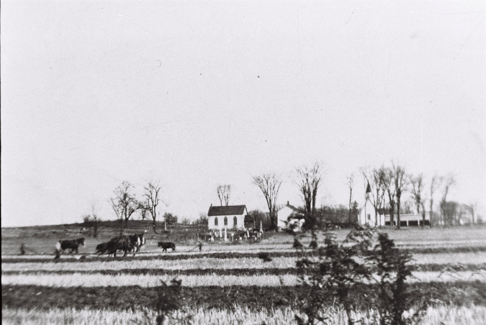 Looking towards St. Paul's Church, from a vantage point where the Kanata Rec Centre is now located on Terry Fox. The house on the hill is the Young farm. The original community churches are also visible, along with the Masonic Hall. The first church, cemetery, and Masonic Hall are still there. Photo from the collection of Roger Young.